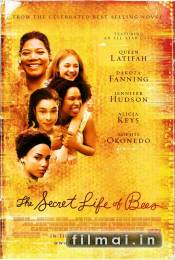 The Secret Life of Bees poster