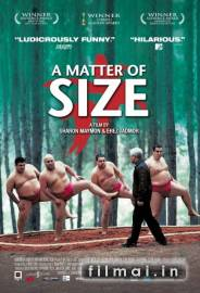 A Matter of Size poster