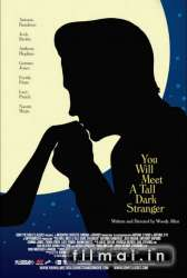 You Will Meet a Tall Dark Stranger poster