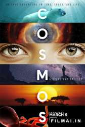 Cosmos A Space Time Odyssey poster