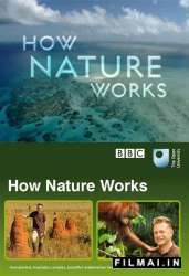 How Nature Works poster