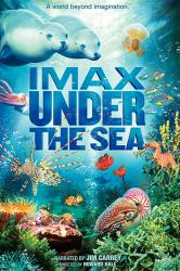 IMAX: Under the Sea poster