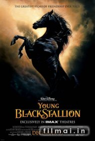Juodasis kumeliukas / The Young Black Stallion (2003)