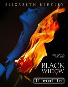 Juodoji našlė / Black Widow (2008)