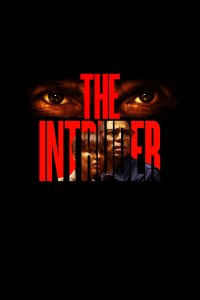 Įsibrovėlis / The Intruder (2019)